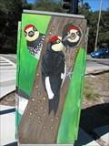Image for Woodpeckers - Felton, CA