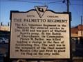 Image for The Palmetto Regiment & Pierce M. Butler