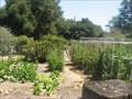 Image for  Master Gardeners of Santa Clara County's demonstration Garden - Palo Alto, CA