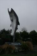 Image for Rakaia Big Salmon