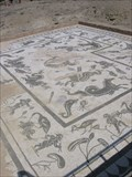 Image for The Roman City of Italica