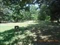 Image for Beaver Cemetery near Seligman, Missouri