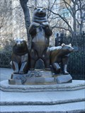 Image for Group of Bears - New York City, NY