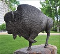Image for North Dakota Centennial Bison ~ Bismarck, North Dakota