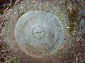 Image for National Ocean Survey Bench Mark 0431B - Port Renfrew, BC