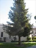 Image for Prof. Charles F. Louie - Santa Clara University - Santa Clara, CA