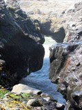 Image for Ocean Arch along  the Yachats 804 Trail