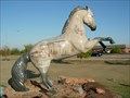 Image for Pioneers in Public Service - Horse in the City - Shawnee, OK