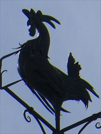 Photo du Coq de l'autre côté avec le soleil qui cache un peu les détails.  Photo of the other side Coq with the sun hides some details.