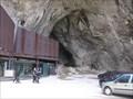 Image for La grotte de Niaux (Ariège) - France