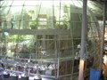 Image for Rainforests of the World - California Academy of Science - San Francisco, CA