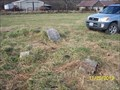 Image for Skelton Cemetery near Seligman, MO