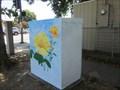 Image for Flower Garden - San Jose, CA