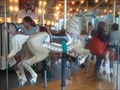 Image for Elaine Wilson Carousel at the National Museum of Play - Rochester, NY
