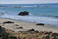 Image for San Luis Obispo North Coast Byway ~ Elephant Seal Rookery
