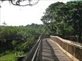 Image for Wall Springs Boardwalk - Palm Harbor, FL
