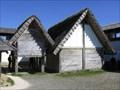 Image for The Heuneburg Celtic Settlement