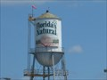 Image for Florida's Natural Water Tower - Lake Wales, FL