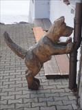 Image for Dog - Jungholz, Austria, TIR