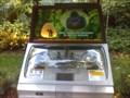 Image for Busch Gardens - Gorilla