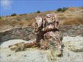 Image for Petrified Forest of Lesvos - Greece