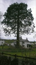 Image for Blackbeck Redwood, Hawkshead, Cumbria