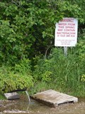 Image for Rural Artesian Well: rural Cook, MN