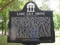 Image for Black Bear Trail/Lake Lily Drive - Maitland, FL