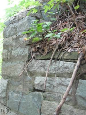 A closer look of the top of the abutment that once carried trains across the creek.
