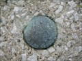 Image for 693702: Topographical Survey Division Marker, Sarnia