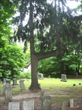 Image for Kinyon Cemetery - Native American Trail Tree