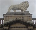 Image for Lion Chambers' Lion – Huddersfield, UK