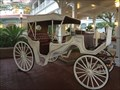 Image for Grand Floridian Carriage - Lake Buena Vista, FL