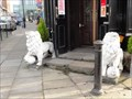 Image for 2 white lions guarding the White Lion – Manchester, UK