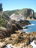 Image for The Featherbed Nature Reserve - Knysna, South Africa