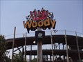 Image for Wild Woody Go-Kart Ride Neon - Branson MO