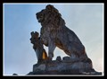 Image for The Lion on the Lake - Zürich, Switzerland