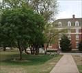 Image for Earl Foster tree - Oklahoma State University - Stillwater, OK
