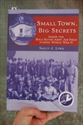 Image for Small Town, Big Secrets - Boca Raton, Florida