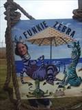 Image for Funkie Zebra - Rockport, TX
