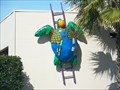 Image for Contractor Turtle - Clearwater, FL