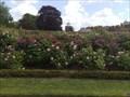 Image for Rose Gardens, Hampton Court Palace, Surrey, UK