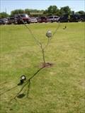Image for Moon Tree - Plano, Texas
