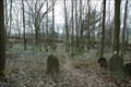 Image for Jewish cemetery / Zidovsky hrbitov - Telice, CZ, EU