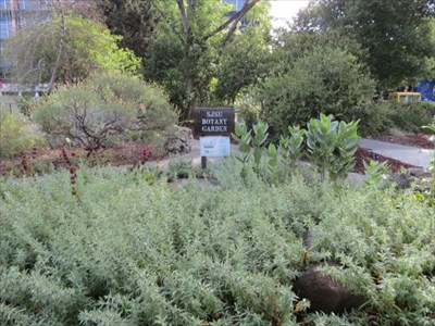 SJSU Botany Garden Entrance, San Jose, CA