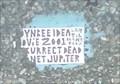 Image for Toynbee - Walnut & Juniper - Philadelphia, PA