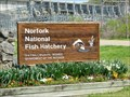 Image for Norfolk National Fish Hatchery - Mountain Home, Ar.