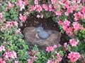 Image for Japanese Garden Stones Hidden Mickey