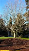 Image for Wildish Family - University of Oregon