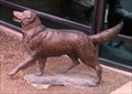 Image for Boy and Dog - Klamath Falls, OR